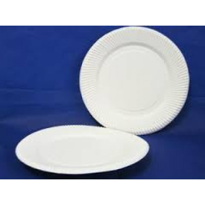 PAPER  HL-UP9 PAPER PLATES UNCOATED 230mm (COSTWISE) 500 CARTON